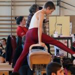 Compétition départementale par équipe GAM – St Domineuc, 25 janvier 2014